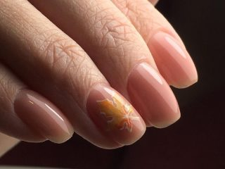pink-nude-fall-nail-design