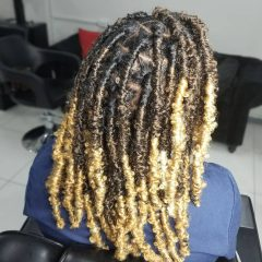 Knotless Butterfly Braids with Blonde Tips