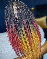 Dark Black Jungle Braids with Colorful Tips
